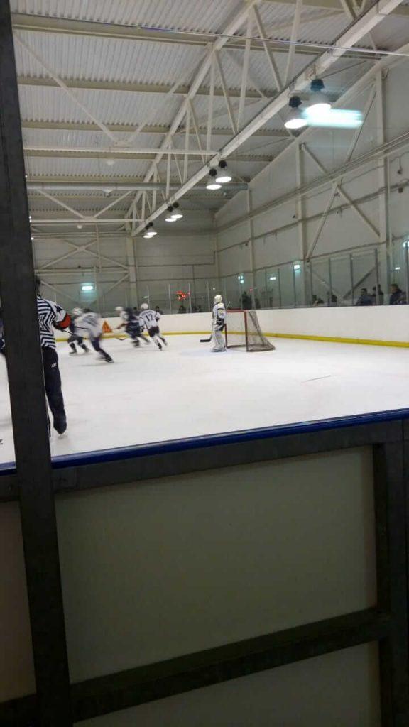 Игра по хоккею НХЛ между хоккейными командами «Легион» и «Богородское»